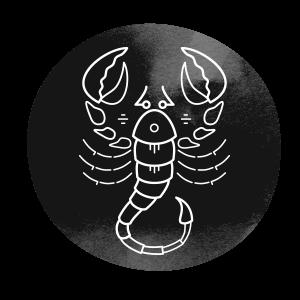 https://www.natalnakarta.online/wp-content/uploads/2018/02/horoscope_dark_08.png